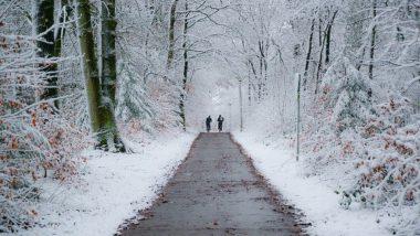 Winter ebike